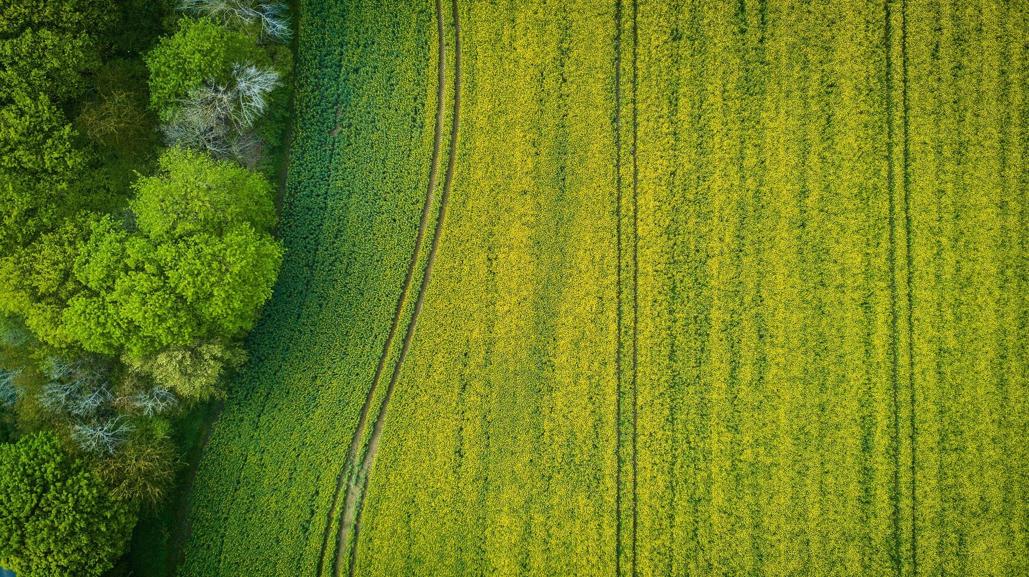 Campo da padel su terreno agricolo: è possibile?